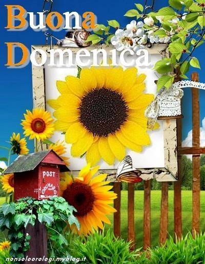 Favorito Il blog della nonna Bruna: BUONA DOMENICA NF69